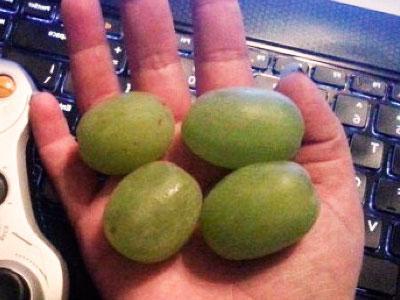 Verdes sonarse comiendo uvas