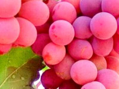 soñar con uvas rosadas